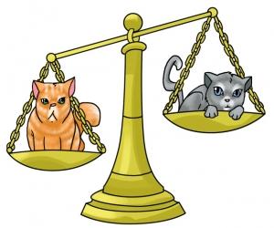 Horoscop răutăcios: Balanță