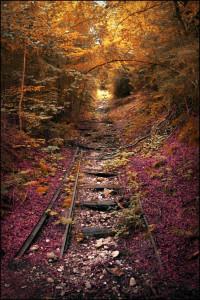 Calea ferata abandonata, SUA