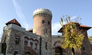 Castel Tepes Parc Carol